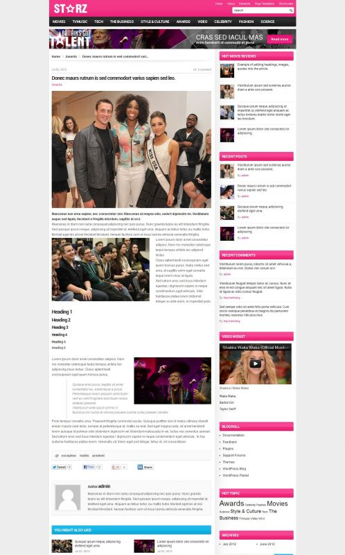 Showbiz News Wordpress Theme - Entertainment - Details