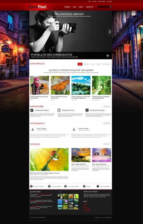 Artwork/Photography Wordpress Theme - ExtraPixel - Home