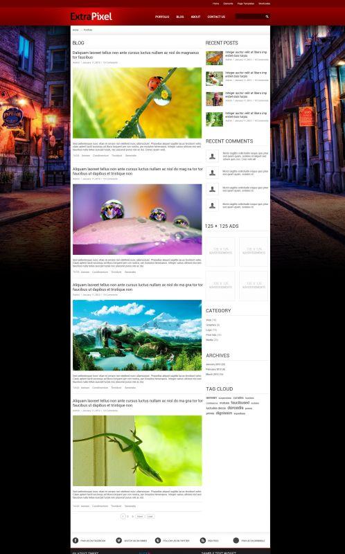 Artwork/Photography Wordpress Theme - ExtraPixel - Blogs