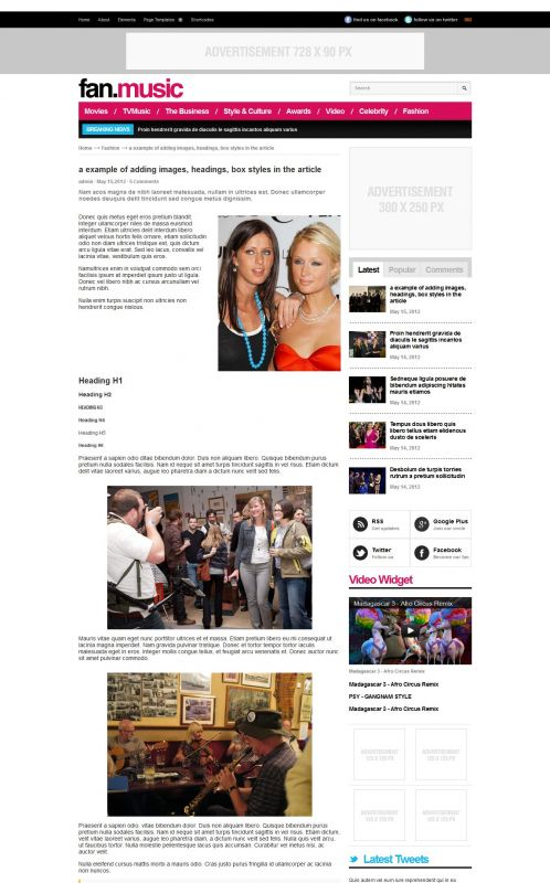 Music Magazine Wordpress Theme - FanMusic - Detail
