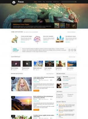 Design Studio Wordpress Theme - Focus