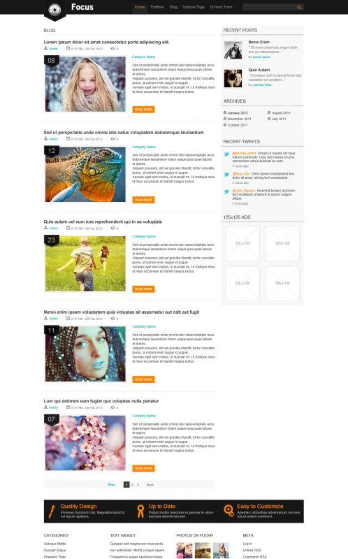 Portfolio/Business WordPress Theme - Focus - Blog