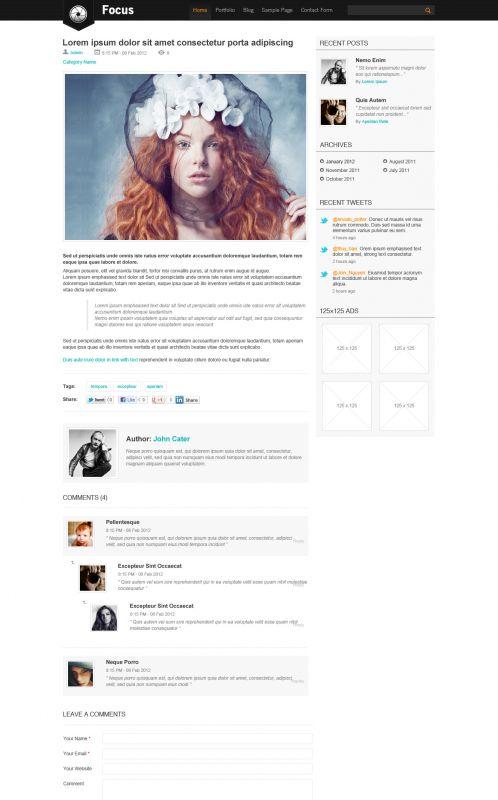 Portfolio/Business WordPress Theme - Focus - Blog Details