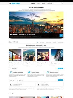 Advertising Agency Wordpress Theme - Genis