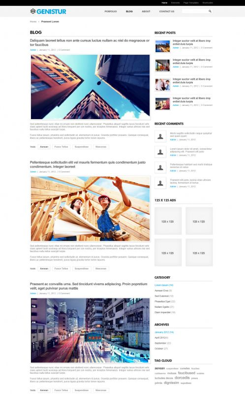 Business/Coporate Wordpress Theme - GenisCoporate - Blog