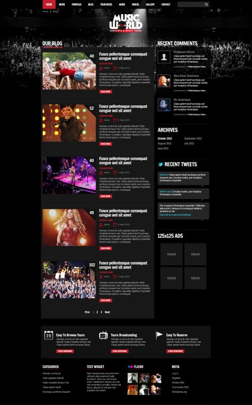 Music/Portfolios Wordpress Theme - MusicTours - Blogs