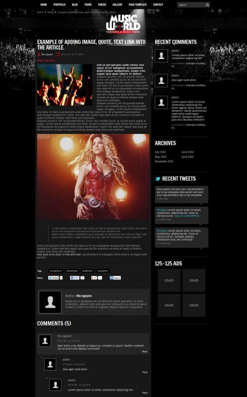 Music/Portfolios Wordpress Theme - MusicTours - Detail