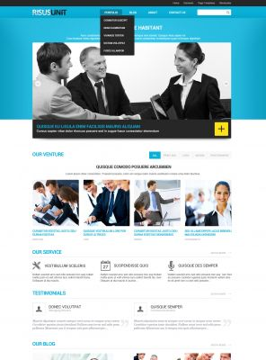 Finance Wordpress Theme - RisusUnit