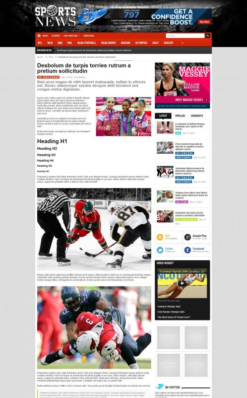 Sport Magazine WordPress Theme - SportNews - Details