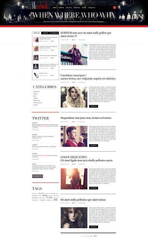 Fashion/Portfolio WordPress Theme - TheCatwalk - Blog