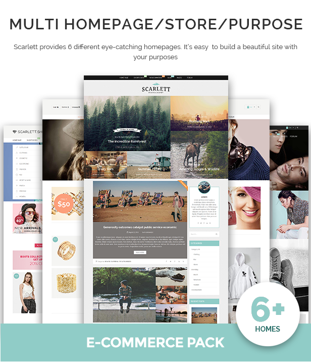 WordPress Blog & Ecommerce Theme